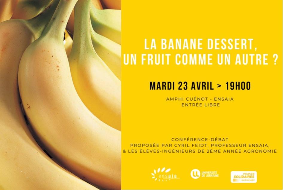 Conférence ENSAIA : La banane dessert, un fruit comme un autre ?